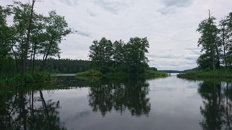 Augustów; rzeka Rospuda