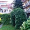 Hotel Białowieski Conference Wellness $ SPA - Białowieża