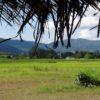 Co zwiedzić w Chiang Rai i okolicy